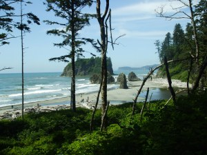 Ruby Beach on the West Coast is reputed to be one of the most beautiful beaches in North America.  I agree!