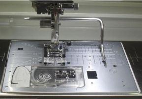 needle plate.JPG